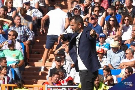 Diego Martínez, entrenador del Granada CF, en un momento del encuentro (JOSÉ M. BALDOMERO)